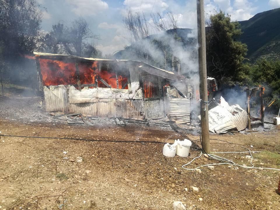 Μεγάλη καταστροφή,πυρκαγιά σε στάνη έκανε στάχτη ζωα και περιουσία σε λίγα λεπτά!ΕΙΚΟΝΕΣ ΦΡΙΚΗΣ!
