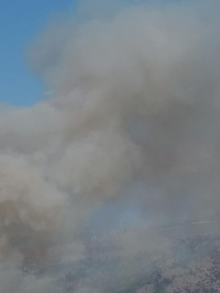 ΕΚΤΑΚΤΟ:Μεγάλη φωτιά στην Τρύφο Ακτίου Βόνιτσας[ξηρομέρου]