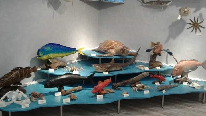 Το εντυπωσιακό Μουσείο θαλάσσης στον Καστό Λευκάδας!