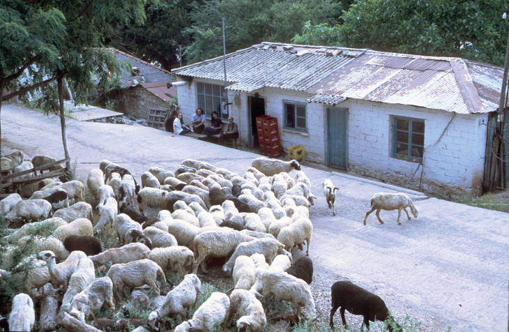 Το μαγαζάκι του ορεινού χωριού