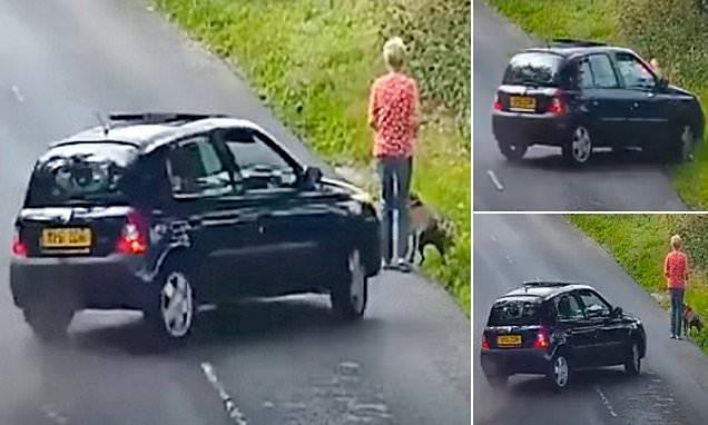 Σοκαριστικό βίντεο: «Τρελό» αυτοκίνητο πέφτει με ταχύτητα σε γυναίκα που είχε βγάλει βόλτα το σκυλάκι της – Το σκυλί πέθανε επιτόπου (Video)