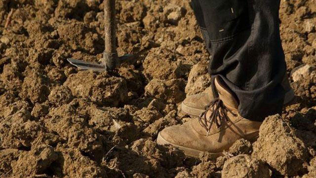 Φτωχός αγρότης ΕΙΧΕ ΤΥΧΗ ΒΟΥΝΟ  δείτε τι ανακάλυψε στο χωράφι του!