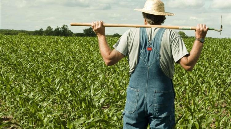 Μέσω εφαρμογής οι αγρότες θα βλέπουν τα πάντα και θα κάνουν αιτήσεις!