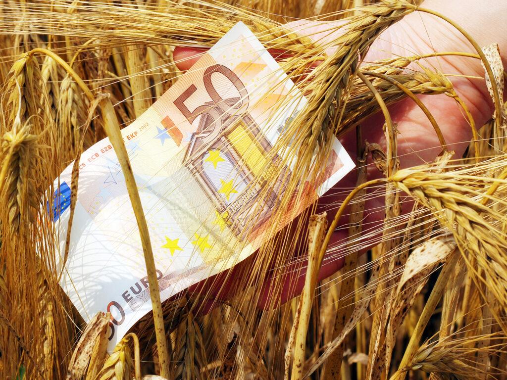 ΟΠΕΚΕΠΕ: Από σήμερα η πληρωμή των άμεσων ενισχύσεων συνολικού ύψους 246 εκατ. ευρώ